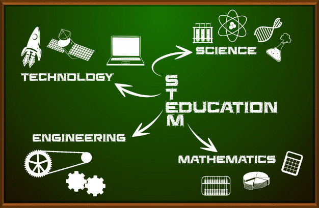 stem learning in India